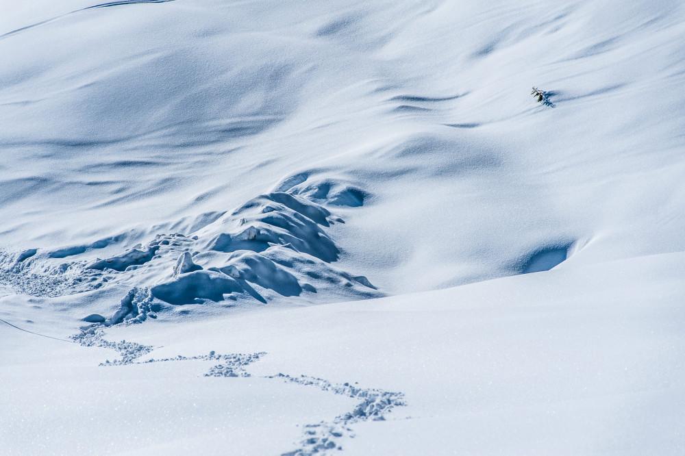 Spuren im Schnee - Alm Almen Europa Farblos Hell Jahreszeit Jahreszeiten Kontrastarm Natur Schnee Steiermark Tauplitz Alm Winter Österreich