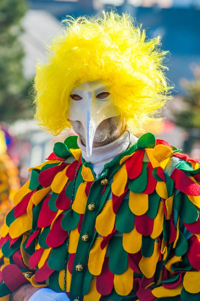 - Brauchtum Fasching Hochformat Karnevall Maske Mensch Tradition Verkleidung grau