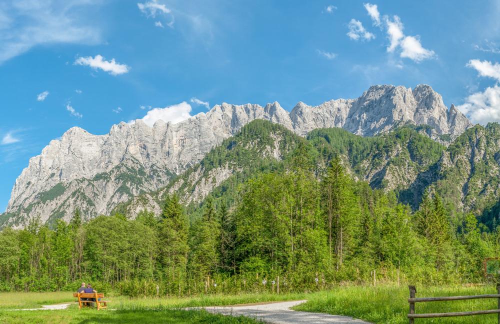 - Baum Berg Ennstal Europa Gesäuse Hochland Holz Nationalpark Gesäuse Nationalparks Natur Pflanze Steiermark Xeis Österreich