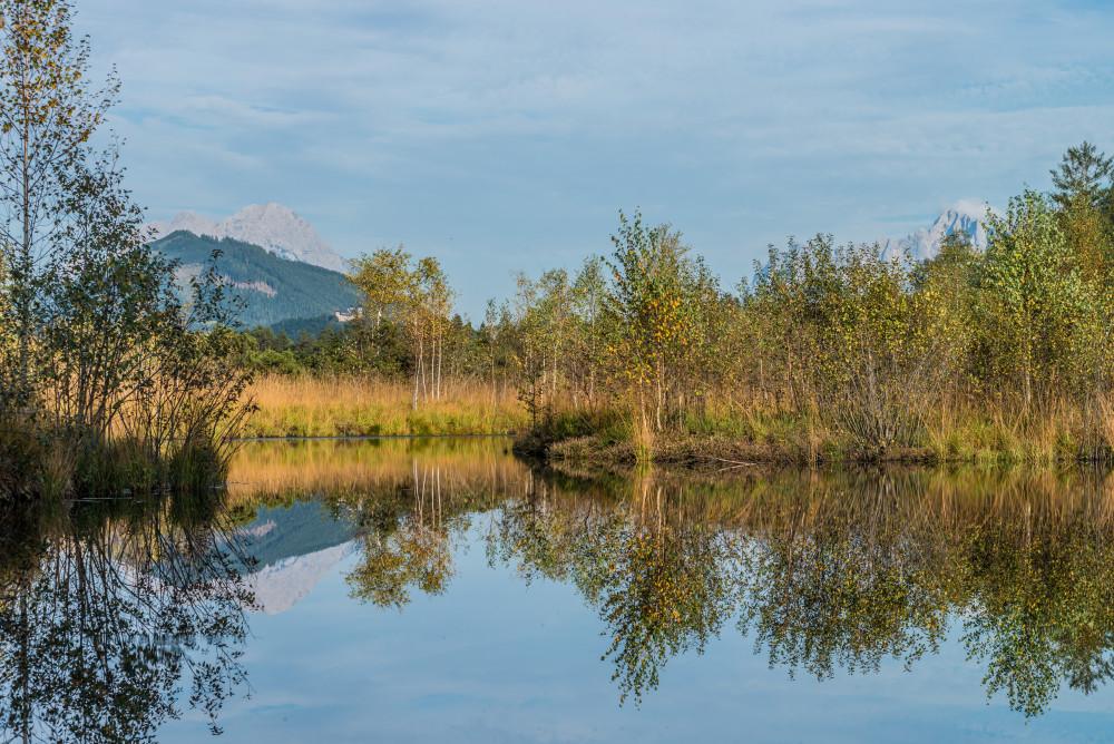 Spiegellung im Pürgschachener Moor - Ennstal Europa Gewässer Herbst Jahreszeit Jahreszeiten Natur Pürgschachener Moor Pürgschchen Moos See Steiermark Wasser Österreich