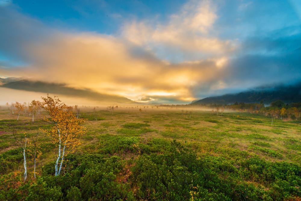 Pürgschachener Moor - Baum Ennstal Europa Herbst Himmel Holz Jahreszeit Jahreszeiten Natur Pflanze Pürgschachener Moor Pürgschchen Moos Steiermark Wiese Wolken Österreich