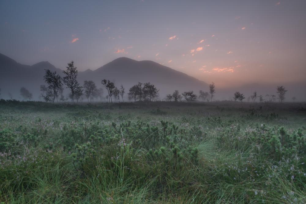 - Ennstal Europa Himmel Natur Pürgschachener Moor Pürgschchen Moos Romantisch Sommer Sonnenuntergang Steiermark grau Österreich