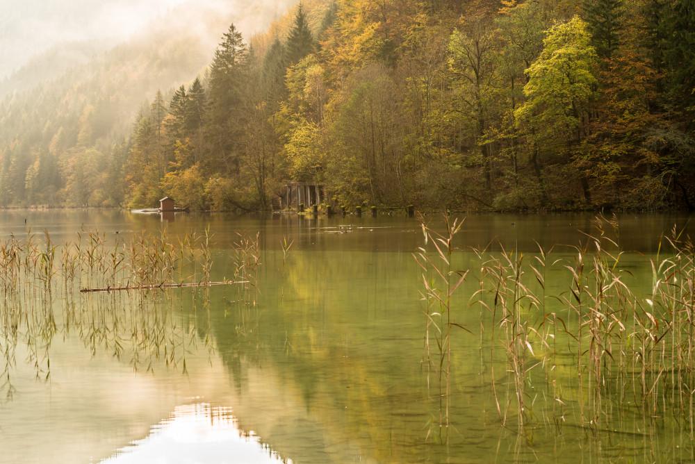 - Bildeigenschaft Bildinhalt Draußen Eisenerz Europa Excire (de) Fluss Gewässer Herbst Jahreszeit Jahreszeiten Leopoldsteiner See Nationalpark Eisenwurzen Nationalparks Natur Ort See Sepia Töne Sonstiges Steiermark Wasser Österreich