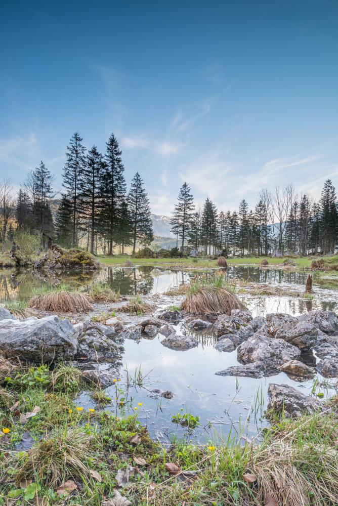 Am Altausseer See - Altaussee Ausseerland Europa Fluss Frühling Gewässer Hochformat Jahreszeit Jahreszeiten Natur Ostersee Salzkammergut See Seewiesen Steiermark Wasser Österreich