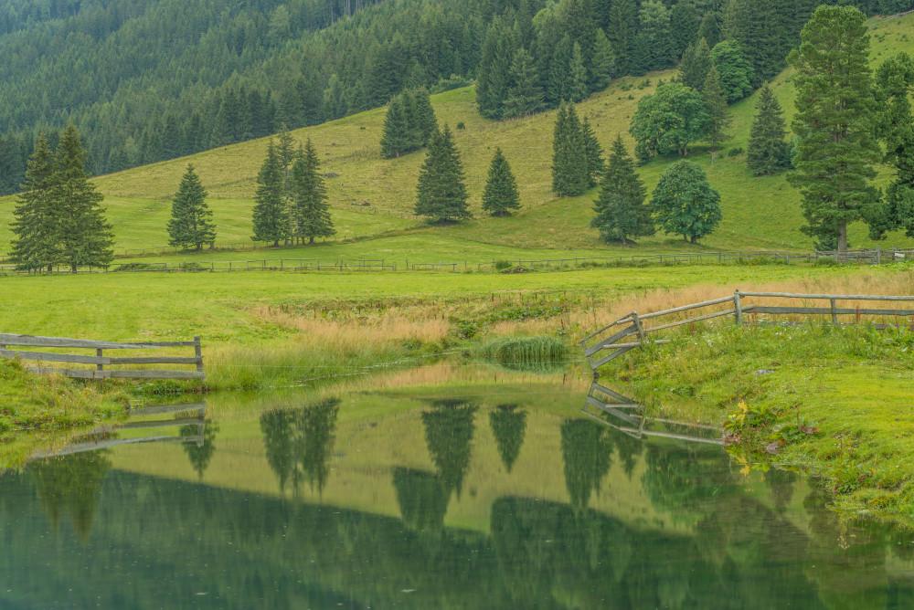 - Europa Feld Hohentauern Landwirtschaft Natur Outdoor Pölsenhube Steiermark Wiese grau Österreich