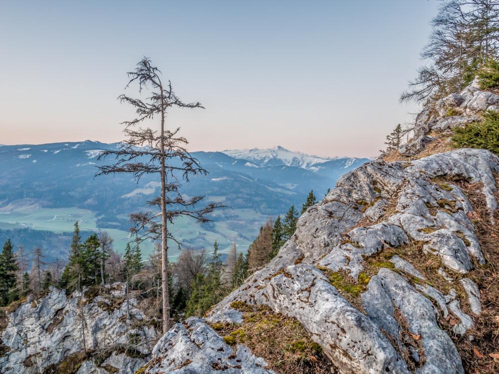 Tressenstein, Blick Richtung Süden - Berg Ennstal Europa Hell Highlight Natur Sonnenaufgang Steiermark Trautenfels Tressenstein Österreich