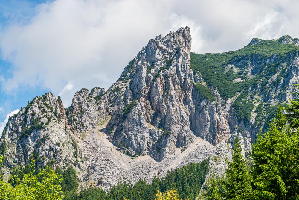 - Baum Berg Ennstal Europa Gesäuse Hahnstein Hochland Holz Kaiserau Nationalpark Gesäuse Nationalparks Natur Pflanze Steiermark Wald Xeis grau Österreich