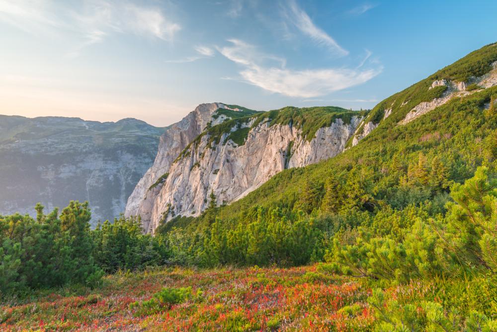 Blick auf die Trisselwand (Altaussee) - Altaussee Ausseerland Baum Berg Europa Grundlsee Hochland Holz Natur Pflanze Salzkammergut Sommer Steiermark Trisselwand Wald Österreich