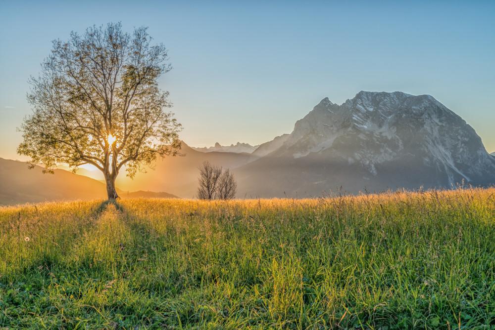 ein herbstlicher Sonnenuntergang in Aigen im Ennstal - Grimming-Donnersbachtal Natur Pflanze Vorberg Wiese
