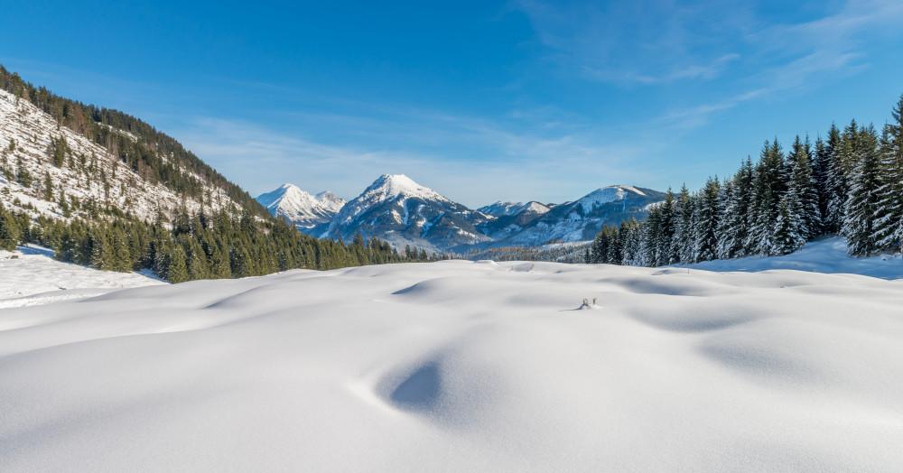 - Alm Almen Fluchtlinien Hell Highlight Hinteregg Hinteregger Alm Jahreszeit Jahreszeiten Natur Schnee Winter Ziegel (Textur)* Draußen grau