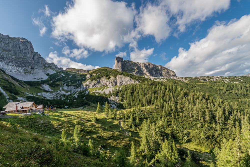 - Ausseerland Baum Die Tauplitz Europa Hochland Holz Natur Pflanze Salzkammergut Steiermark Tauplitz Tauplitzalm Wald Österreich