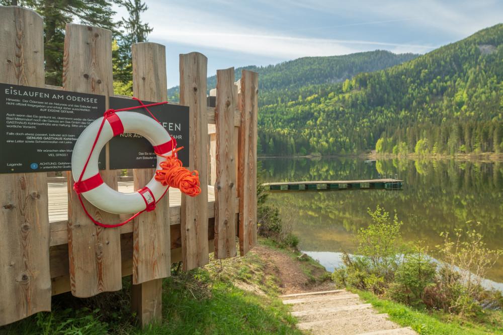 am Ödensee - Ausseerland Europa Fluss Gewässer Kainisch Natur Salzkammergut See Steiermark Wasser grau Ödensee Österreich