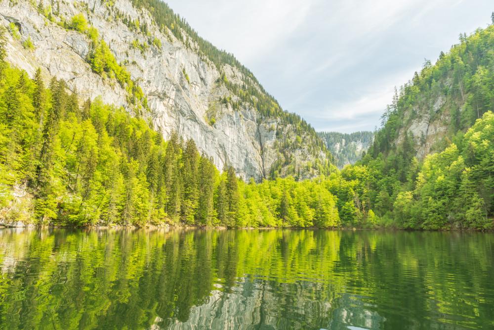 - Ausseerland Baum Bildeigenschaft Europa Gewässer Grundlsee Holz Kontrastreich Natur Pflanze Salzkammergut Schifffahrt Grundlsee See Steiermark Toplitzsee Wasser Österreich