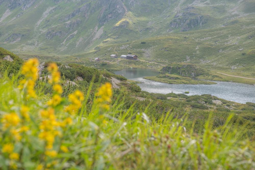 rund um die Giglachseen in den Schladminger Tauern - Ennstal Europa Gewässer Giglach See Hochland Natur Schladminger Tauern See Steiermark Wiese Österreich