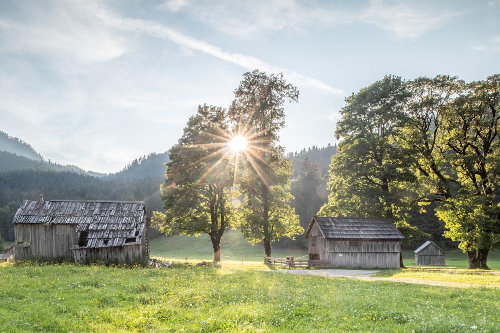 In der Blaa Alm - Altaussee Architektur Ausseerland Baum Blaa Alm Europa Gebäude Holz Landwirtschaft Natur Pflanze Salzkammergut Scheune Steiermark Österreich
