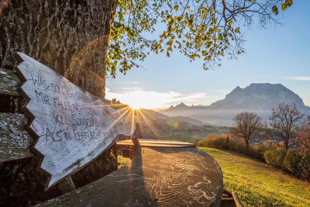 gemütliches Bankerl in Vorberg - Grimming-Donnersbachtal Herbst Highlight Hochhuberhof Jahreszeit Jahreszeiten Linde Natur Vorberg