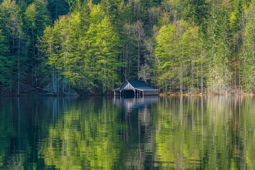 Fischerhütte am Toplitzsee - Ausseerland Baum Europa Gewässer Grundlsee Holz Natur Pflanze Salzkammergut Schifffahrt Grundlsee See Steiermark Toplitzsee Wald Wasser grau Österreich