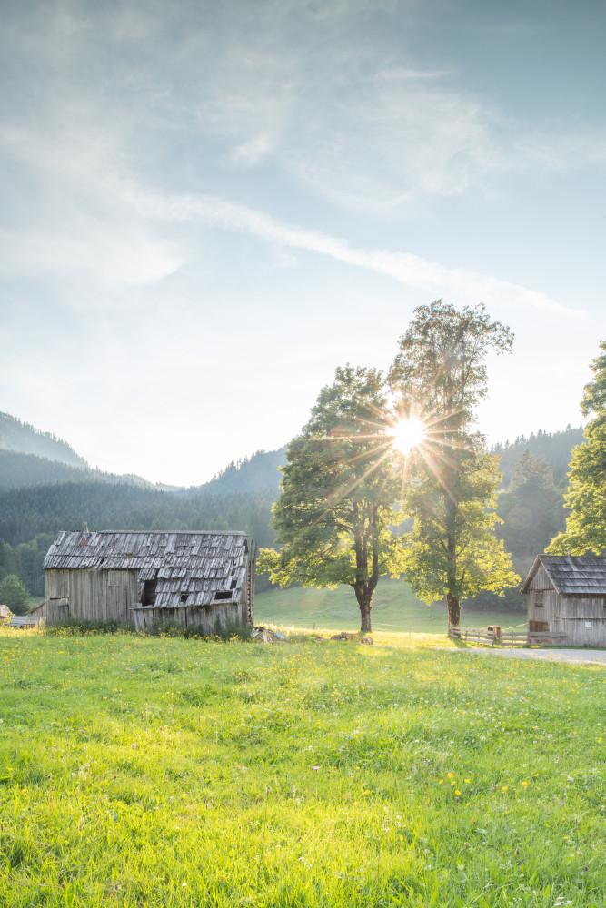 In der Blaa Alm - Altaussee Ausseerland Blaa Alm Europa Hell Hochformat Natur Salzkammergut Steiermark Wiese Österreich