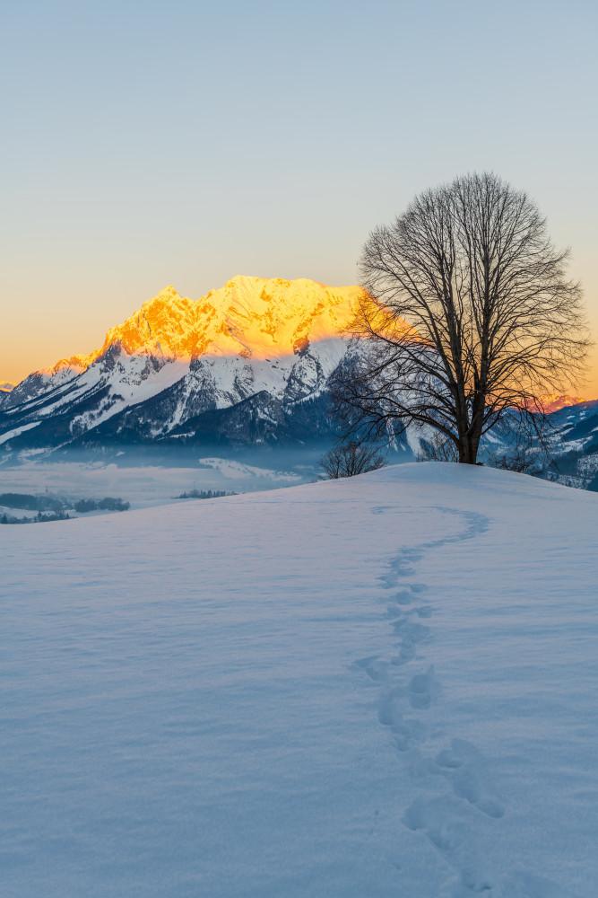 Alpenglühen am winterlichen Grimming - Berg Europa Gewässer Grimming Hell Hochformat Hochhuberhof Jahreszeit Jahreszeiten Linde Natur Schnee See Steiermark Wasser Winter Österreich