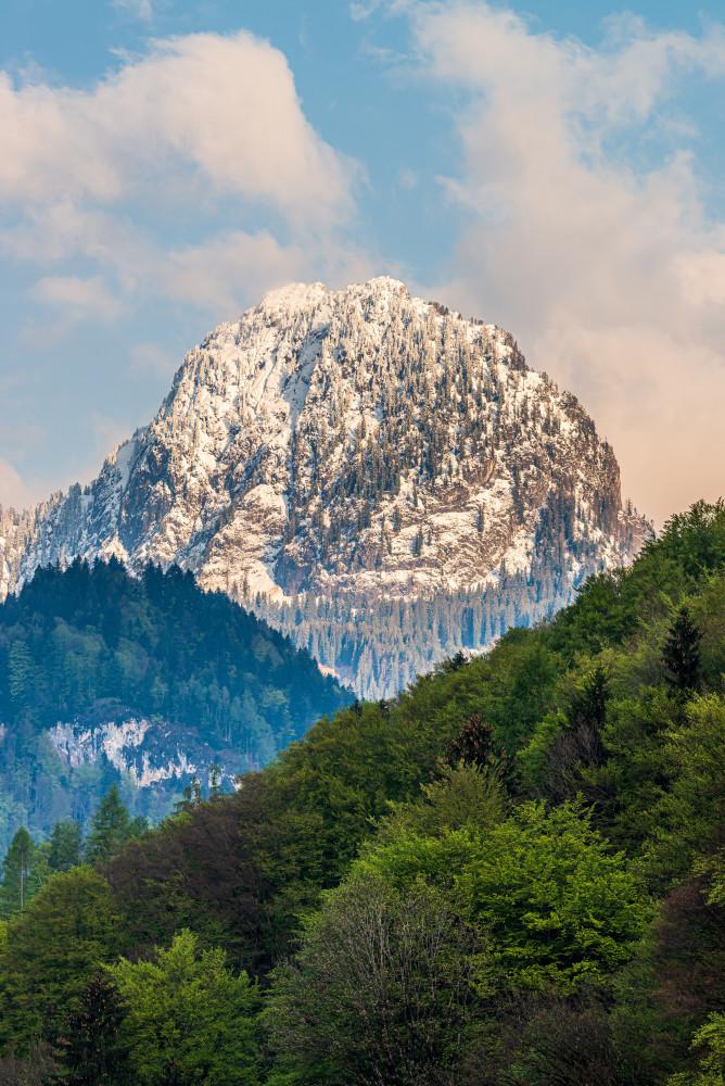 der schneebedeckte Gipfel des Hochtausing - Baum Berg Dunkel Ennstal Europa Hochformat Hochland Hochtausing Holz Natur Pflanze Steiermark Tausing Wald Österreich