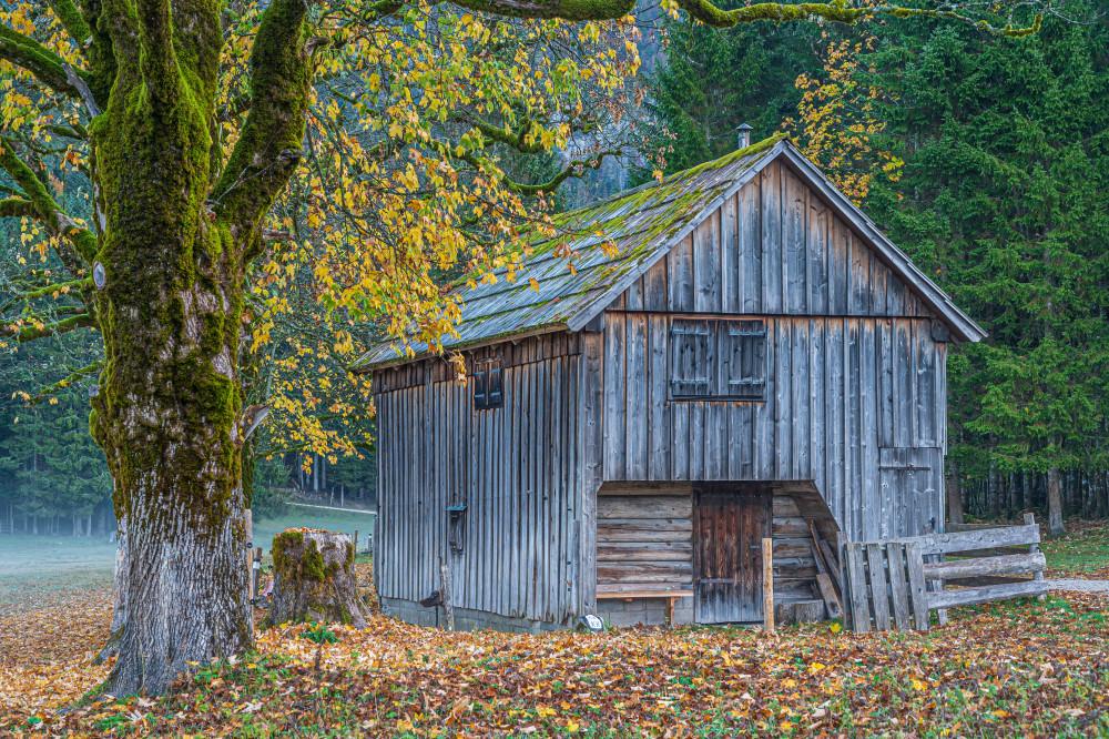 - Altaussee Architektur Ausseerland Bildinhalt Blaa Alm Europa Gebäude Herbst Holz Hütte Jahreszeit Jahreszeiten Landwirtschaft Salzkammergut Scheune Steiermark grau Österreich