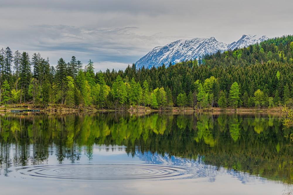 - Ausseerland Berg Europa Gewässer Grimming Natur Salzkammergut See Spiegellung Steiermark Wasser grüne Bäume Ödensee Österreich