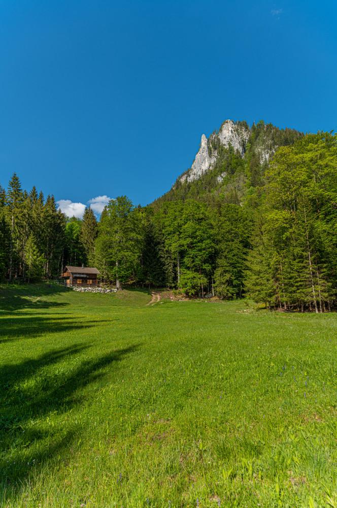- Ausseerland Bad Aussee Berg Bärenmoos Bärnmoos Europa Hochland Natur Obertressen Salzkammergut Steiermark Tressenstein Wiese Österreich