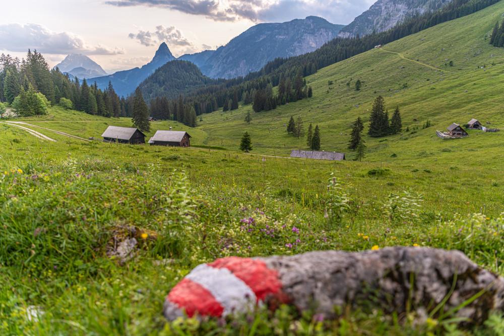 - Alm Almen Berg Dunkel Grimming Hinteregg Hinteregger Alm Hochland Hochtausing Markierung Natur Schilder Tafel Tausing Wiese