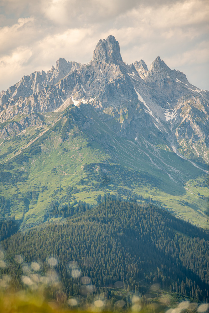 - Berg Bischofsmütze Dachstein Europa Fluss Gosaukamm Highlight Hochland Mütze Natur Pongau Radstadt Salzburg See Steiermark Wasser Wollgras schwarze Lacke Österreich